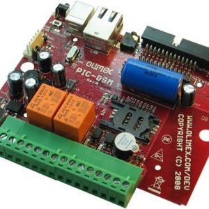 PIC-GSM-1